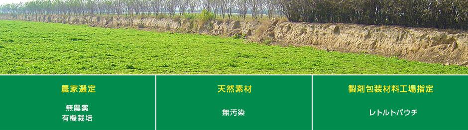 たんぽぽ茶ショウキT-1 原材料の仕入ロゴ